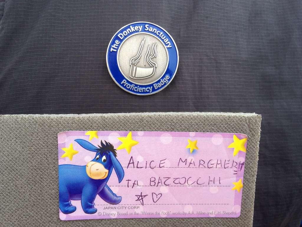 Ecco la spilla da Donkey Guide che ha fruttato involontariamente uno sconto del 10% al Quechua Store!
