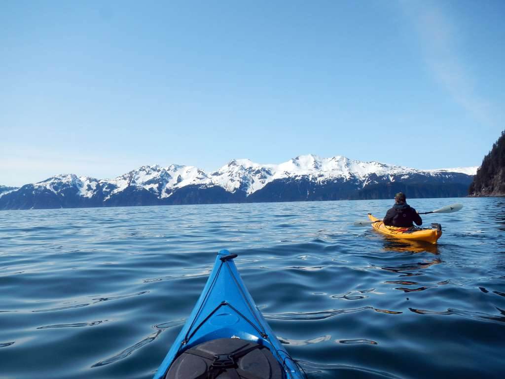 Da li a poco una balena ha fatto capolino a 100 metri dal nostro kayak.